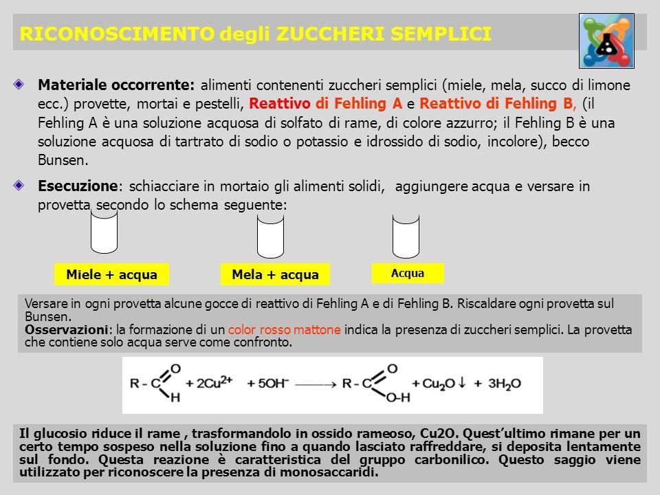 RICONOSCIMENTO degli ZUCCHERI SEMPLICI Materiale occorrente: alimenti contenenti zuccheri semplici (miele, mela, succo di limone ecc.) provette, morta