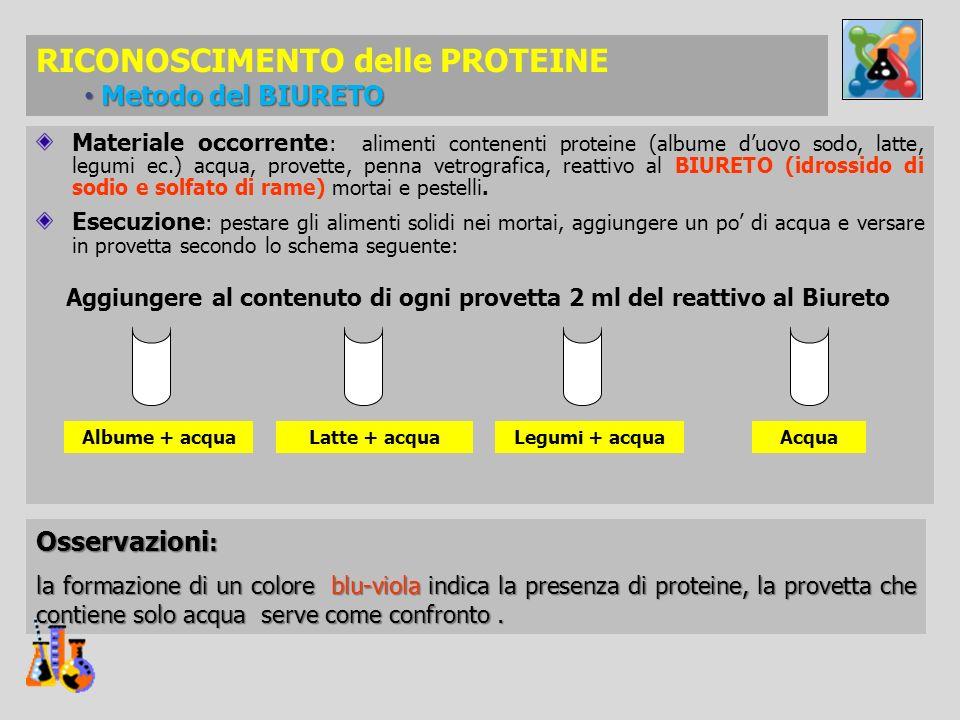 Materiale occorrente : alimenti contenenti proteine (albume duovo sodo, latte, legumi ec.) acqua, provette, penna vetrografica, reattivo al BIURETO (i