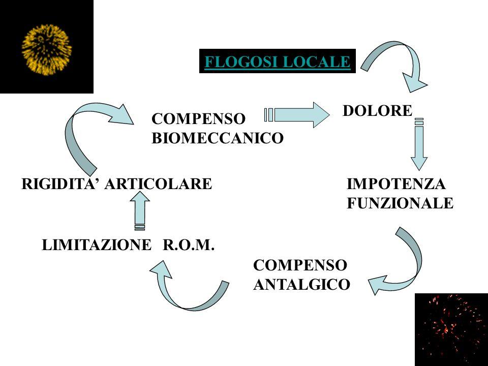 FLOGOSI LOCALE DOLORE RIGIDITA ARTICOLARE COMPENSO ANTALGICO LIMITAZIONE R.O.M. IMPOTENZA FUNZIONALE COMPENSO BIOMECCANICO