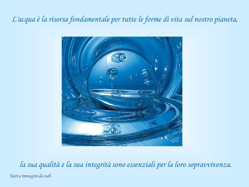 L'acqua è la risorsa fondamentale per tutte le forme di vita sul nostro pianeta, la sua qualità e la sua integrità sono essenziali per la loro sopravv