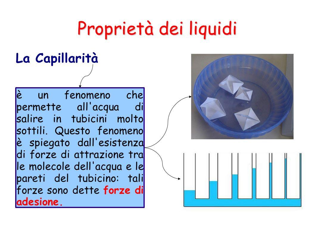 Proprietà dei liquidi La Capillarità è un fenomeno che permette all'acqua di salire in tubicini molto sottili. Questo fenomeno è spiegato dall'esisten