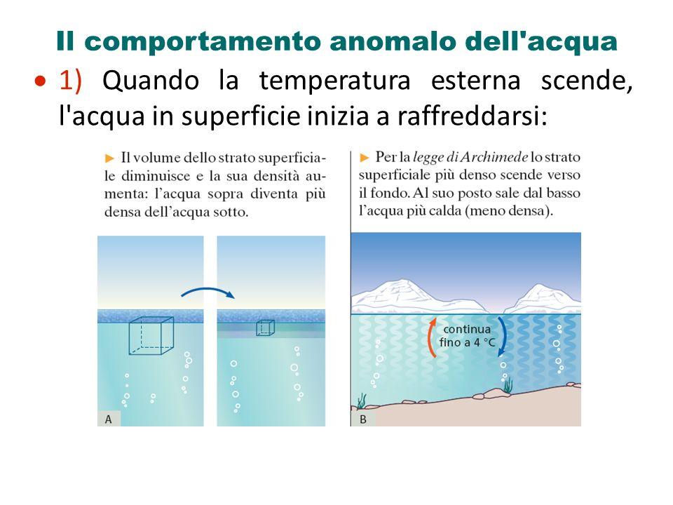 Il comportamento anomalo dell'acqua 1) Quando la temperatura esterna scende, l'acqua in superficie inizia a raffreddarsi: