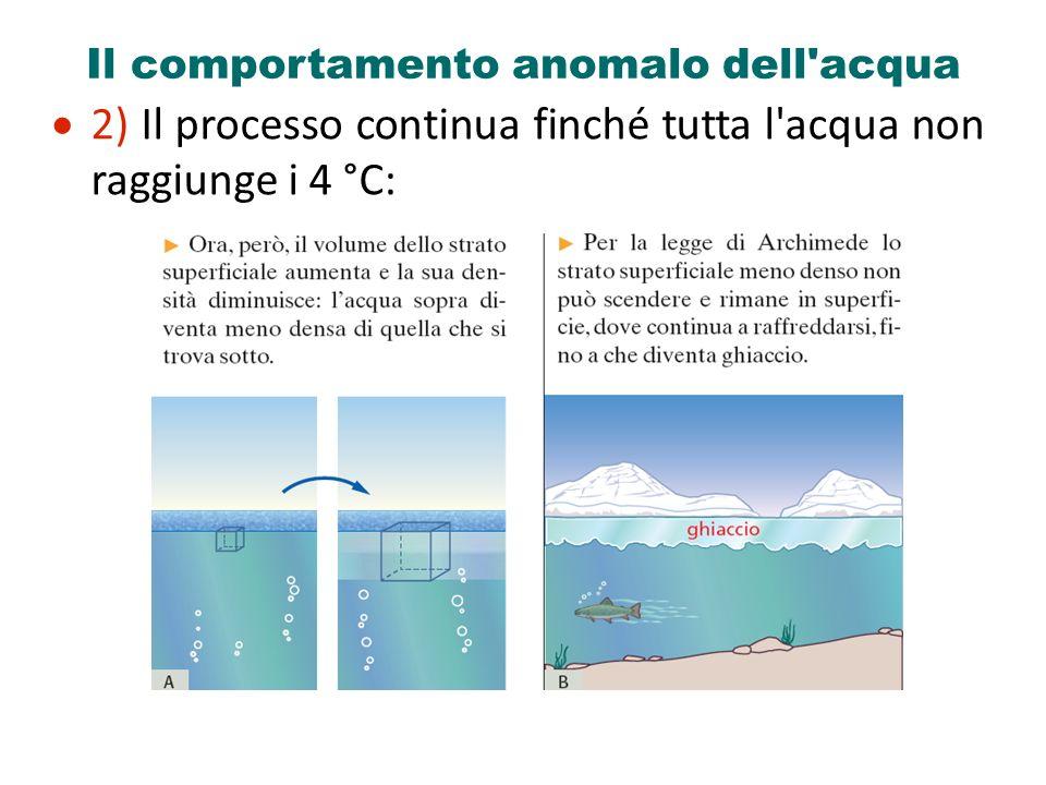 Il comportamento anomalo dell'acqua 2) Il processo continua finché tutta l'acqua non raggiunge i 4 °C: