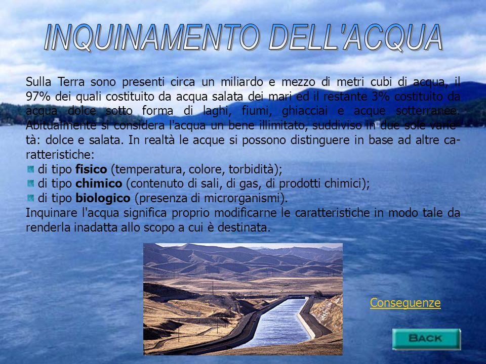 Riduzione potabilità Riduzione ossigeno (per i pesci) Eutrofizzazione Mucillagini Limiti alla balneazione (presenza di germi patogeni)