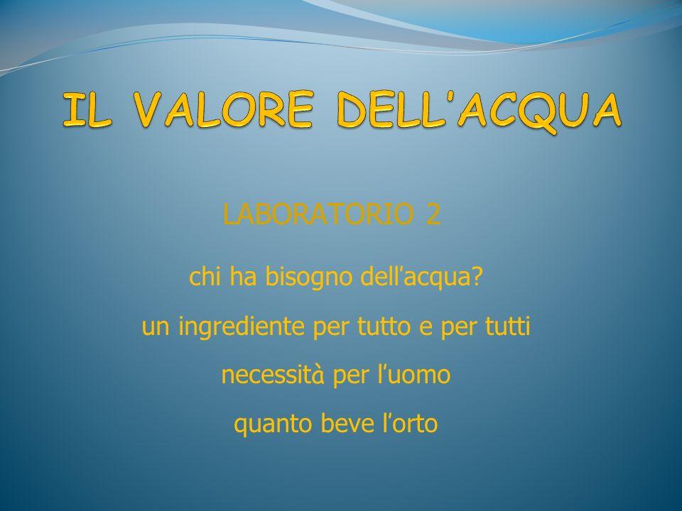 LABORATORIO 2 chi ha bisogno dell acqua? un ingrediente per tutto e per tutti necessit à per l uomo quanto beve l orto