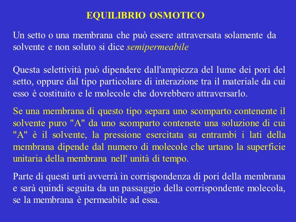 EQUILIBRIO OSMOTICO Un setto o una membrana che può essere attraversata solamente da solvente e non soluto si dice semipermeabile Questa selettività p