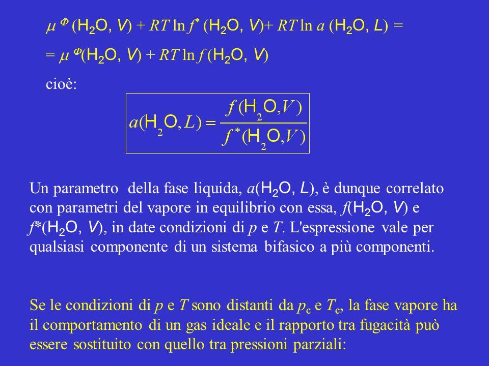 ( H 2 O, V ) + RT ln f * ( H 2 O, V )+ RT ln a ( H 2 O, L ) = = ( H 2 O, V ) + RT ln f ( H 2 O, V ) cioè: Un parametro della fase liquida, a( H 2 O, L