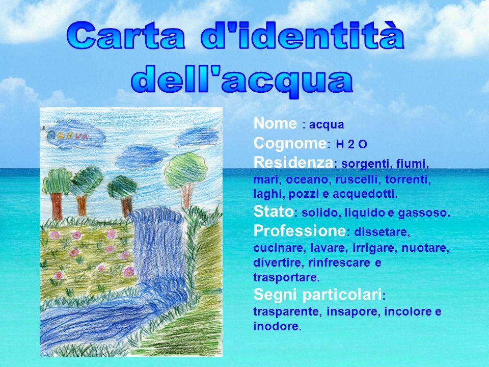 Nome : acqua Cognome : H 2 O Residenza : sorgenti, fiumi, mari, oceano, ruscelli, torrenti, laghi, pozzi e acquedotti. Stato : solido, liquido e gasso