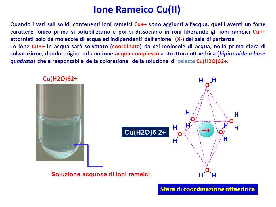 Cu(H2O)6 2+ Sfera di coordinazione ottaedrica Quando i vari sali solidi contenenti ioni rameici Cu++ sono aggiunti allacqua, quelli aventi un forte carattere ionico prima si solubilizzano e poi si dissociano in ioni liberando gli ioni rameici Cu++ attorniati solo da molecole di acqua ed indipendenti dallanione (X-) del sale di partenza.