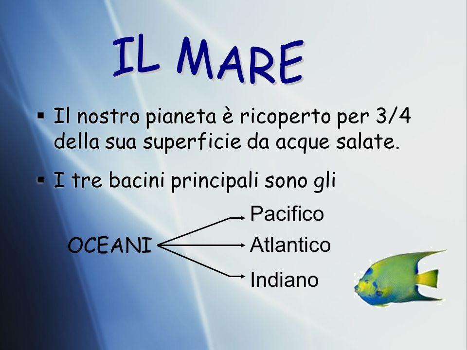 Il nostro pianeta è ricoperto per 3/4 della sua superficie da acque salate. I tre bacini principali sono gli Il nostro pianeta è ricoperto per 3/4 del