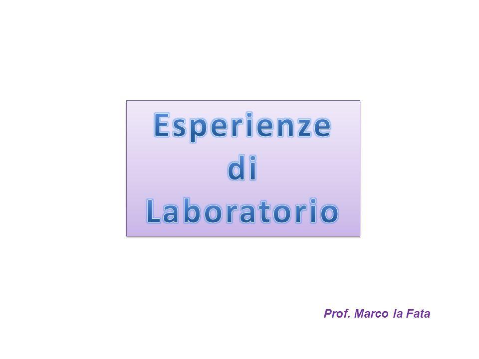 Prof. Marco la Fata