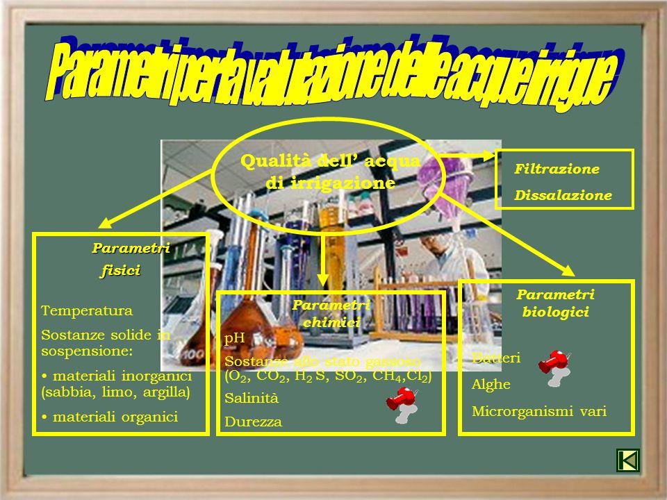 Temperatura Sostanze solide in sospensione: materiali inorganici (sabbia, limo, argilla) materiali organici Parametri Parametri fisici fisici Parametr