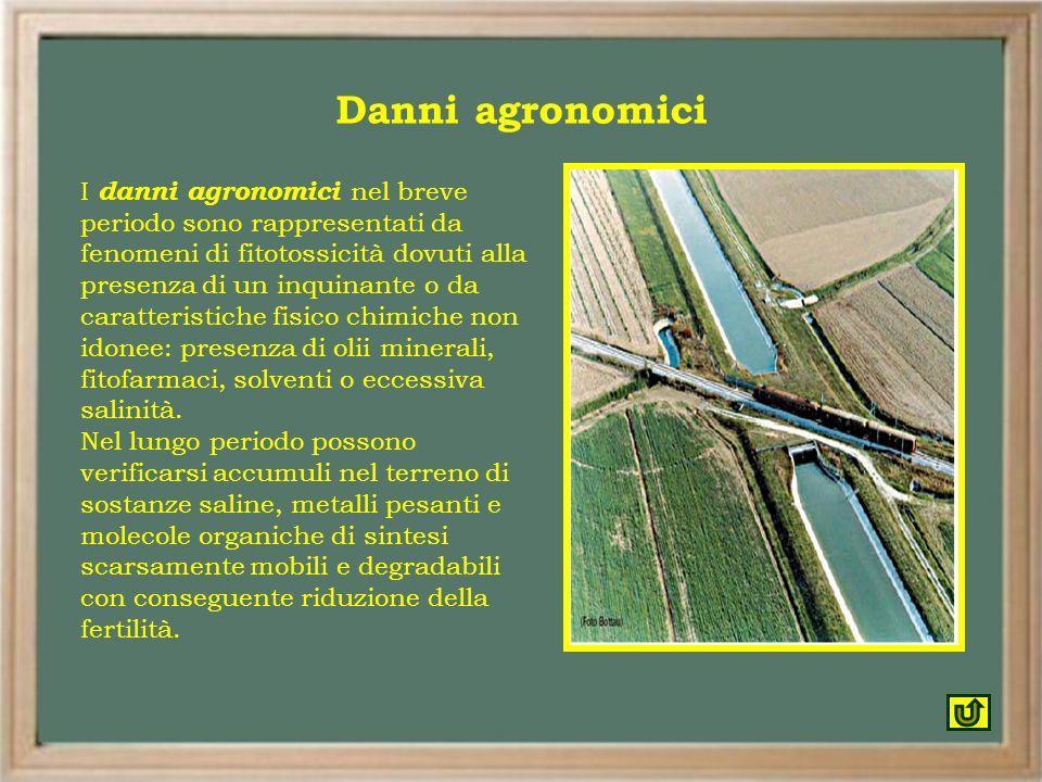Danni agronomici I danni agronomici nel breve periodo sono rappresentati da fenomeni di fitotossicità dovuti alla presenza di un inquinante o da carat