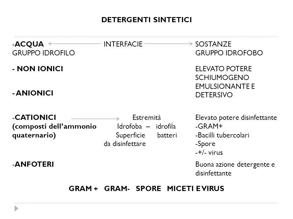 DETERGENTI SINTETICI -ACQUA GRUPPO IDROFILO INTERFACIESOSTANZE GRUPPO IDROFOBO - NON IONICIELEVATO POTERE SCHIUMOGENO EMULSIONANTE E DETERSIVO - ANION