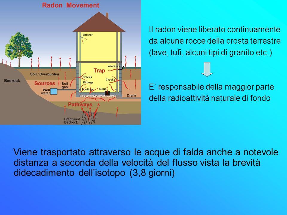 Viene trasportato attraverso le acque di falda anche a notevole distanza a seconda della velocità del flusso vista la brevità didecadimento dellisotop