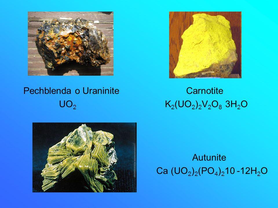 Pechblenda o Uraninite Carnotite UO 2 K 2 (UO 2 ) 2 V 2 O 8 3H 2 O Autunite Ca (UO 2 ) 2 (PO 4 ) 2 10 -12H 2 O