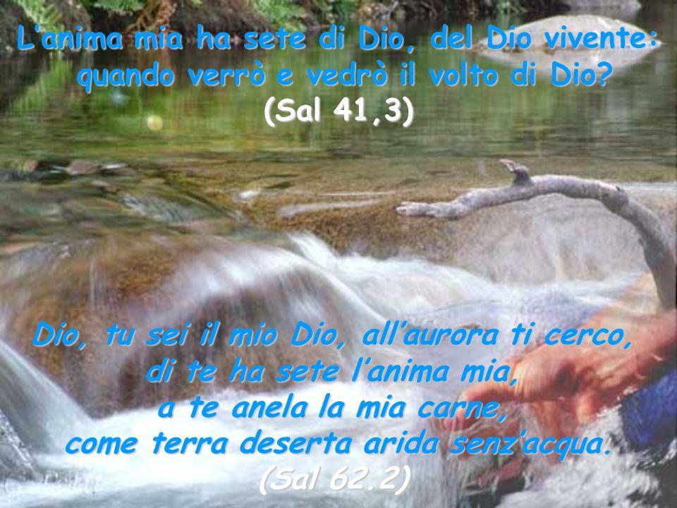 Lanima mia ha sete di Dio, del Dio vivente: quando verrò e vedrò il volto di Dio? (Sal 41,3) Dio, tu sei il mio Dio, allaurora ti cerco, di te ha sete