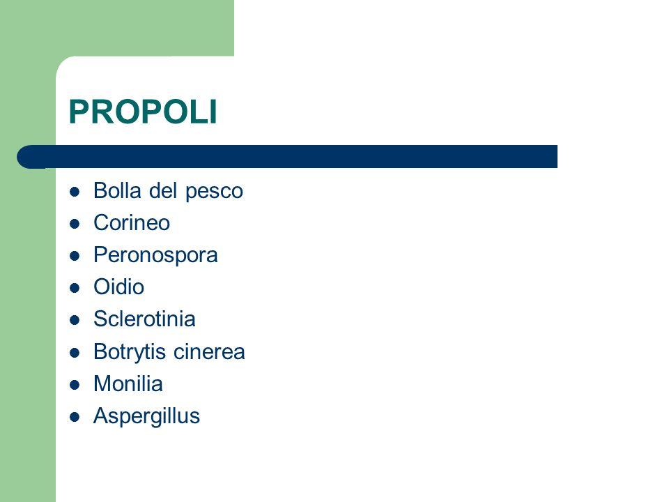 PROPOLI Bolla del pesco Corineo Peronospora Oidio Sclerotinia Botrytis cinerea Monilia Aspergillus