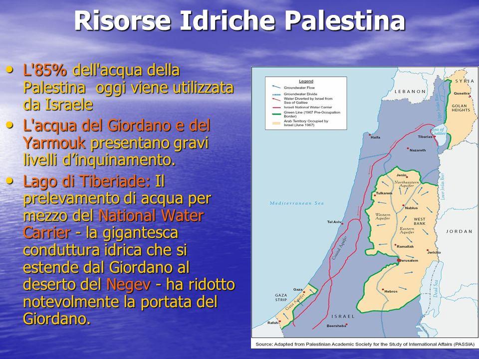 Risorse Idriche Palestina L 85% dell acqua della Palestina oggi viene utilizzata da Israele L 85% dell acqua della Palestina oggi viene utilizzata da Israele L acqua del Giordano e del Yarmouk presentano gravi livelli dinquinamento.
