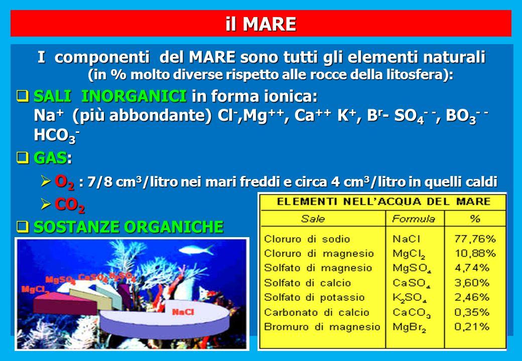 il MARE I componenti del MARE sono tutti gli elementi naturali (in % molto diverse rispetto alle rocce della litosfera): SALI INORGANICI in forma ioni