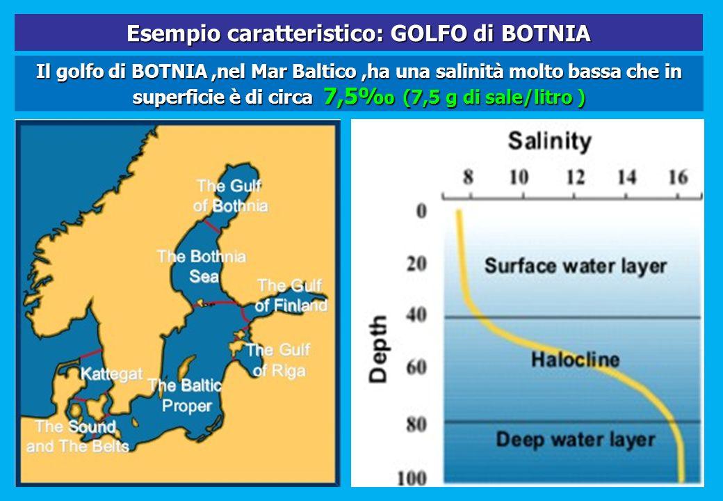 Il golfo di BOTNIA,nel Mar Baltico,ha una salinità molto bassa che in superficie è di circa 7,5 (7,5 g di sale/litro ) Esempio caratteristico: GOLFO d