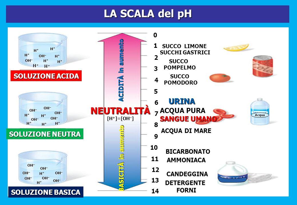LA SCALA del pH Acqua SOLUZIONE BASICA DETERGENTEFORNI SOLUZIONE ACIDA SOLUZIONE NEUTRA 0 1 2 3 4 5 6 7 8 9 10 11 12 SUCCO LIMONE SUCCHI GASTRICI SUCC