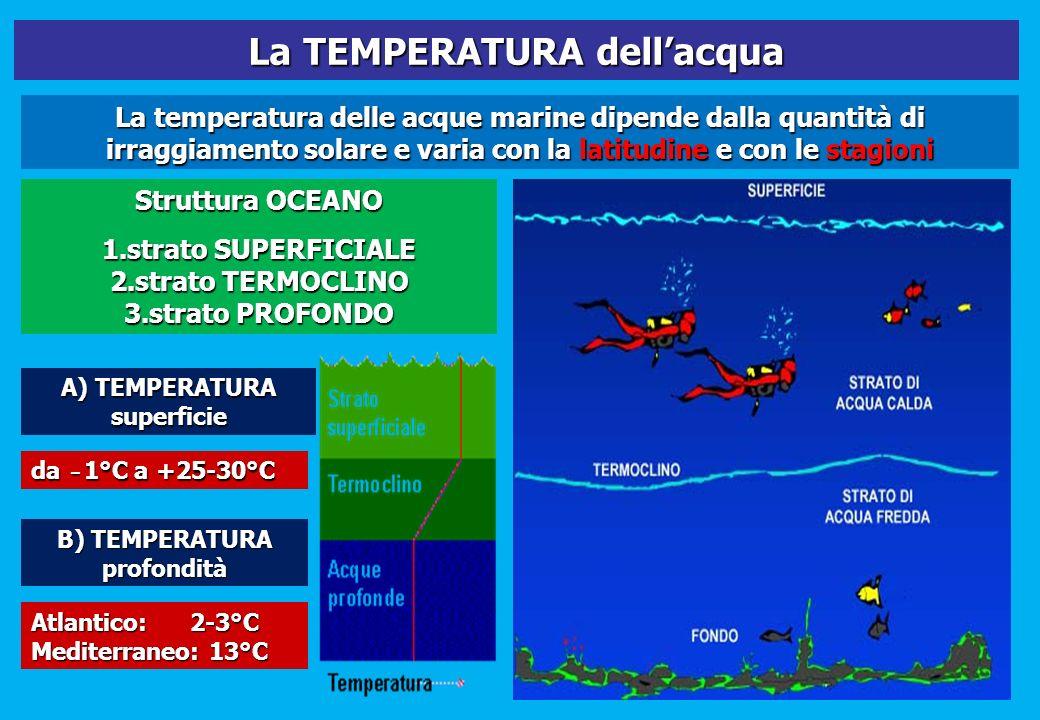La TEMPERATURA dellacqua La temperatura delle acque marine dipende dalla quantità di irraggiamento solare e varia con la latitudine e con le stagioni