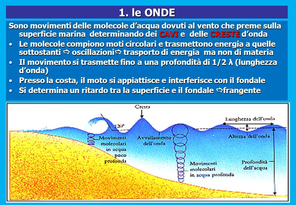 1. le ONDE Sono movimenti delle molecole dacqua dovuti al vento che preme sulla superficie marina determinando dei CAVI e delle CRESTE donda Le moleco
