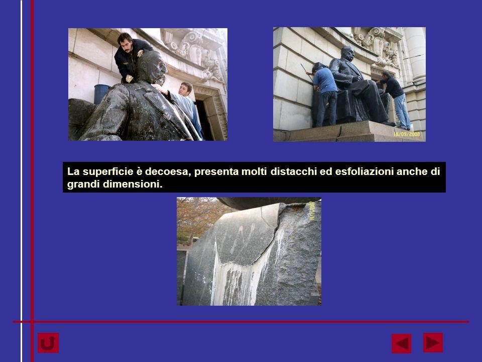 La pietra è coperta da sporco incoerente, incrostazioni di guano, muffe e licheni nella parte superiore.