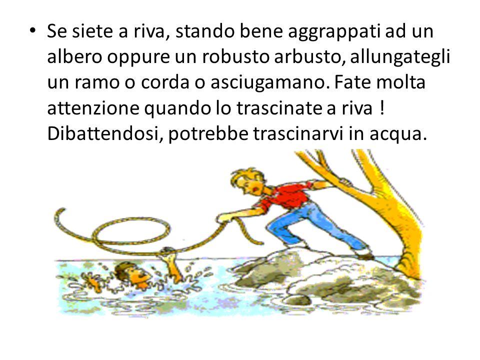 Se siete a riva, stando bene aggrappati ad un albero oppure un robusto arbusto, allungategli un ramo o corda o asciugamano.