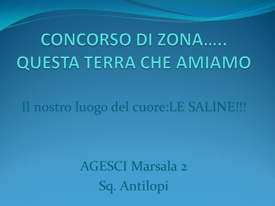 Il nostro luogo del cuore:LE SALINE!!! AGESCI Marsala 2 Sq. Antilopi