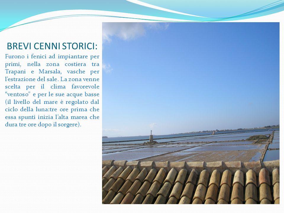 BREVI CENNI STORICI: Furono i fenici ad impiantare per primi, nella zona costiera tra Trapani e Marsala, vasche per lestrazione del sale. La zona venn