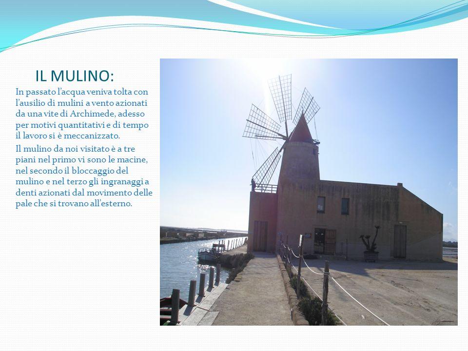 IL MULINO: In passato lacqua veniva tolta con lausilio di mulini a vento azionati da una vite di Archimede, adesso per motivi quantitativi e di tempo