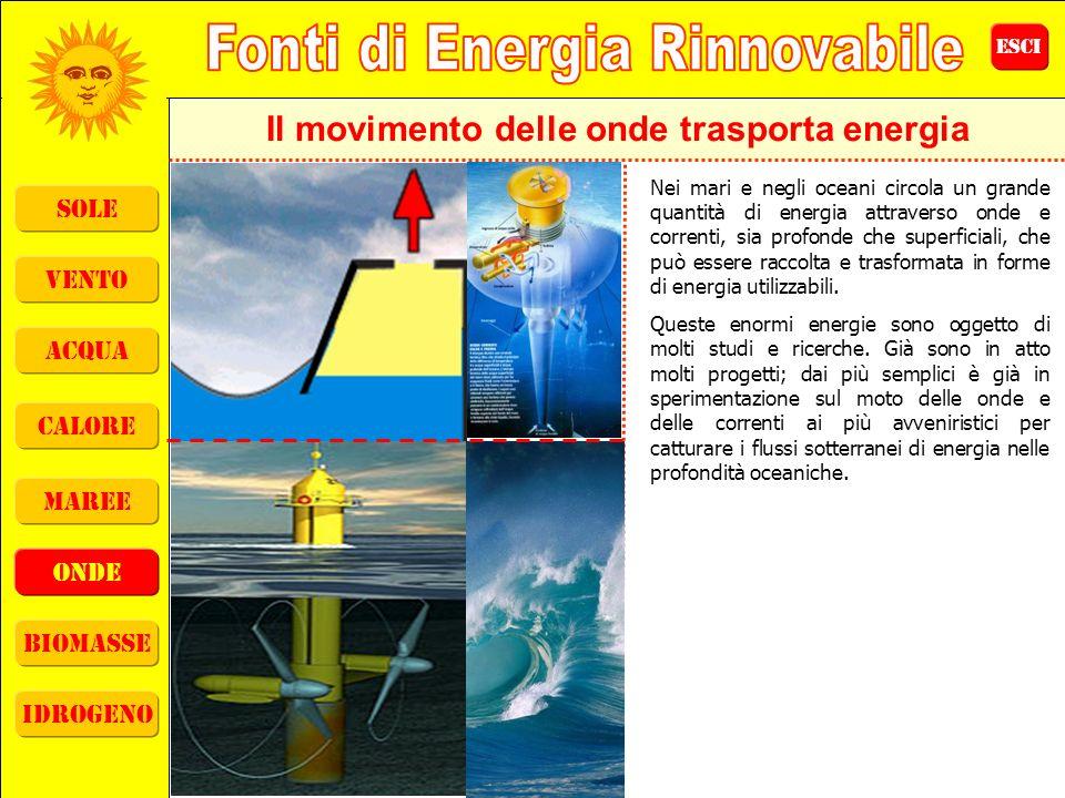 ESCI sole vento acqua calore maree onde biomasse idrogeno Il movimento delle onde trasporta energia Nei mari e negli oceani circola un grande quantità