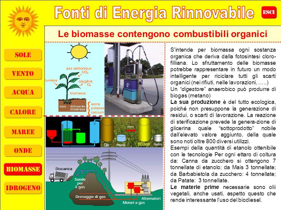 ESCI sole vento acqua calore maree onde biomasse idrogeno Le biomasse contengono combustibili organici S'intende per biomassa ogni sostanza organica c