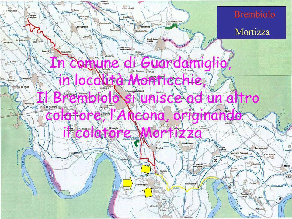 Scuola Media Griffini A.S. 2008-2009 Classi 1^C & 2^C In comune di Guardamiglio, in località Monticchie, Il Brembiolo si unisce ad un altro colatore,