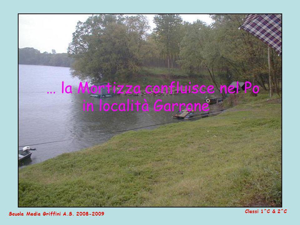 Scuola Media Griffini A.S. 2008-2009 Classi 1^C & 2^C … la Mortizza confluisce nel Po in località Garrone