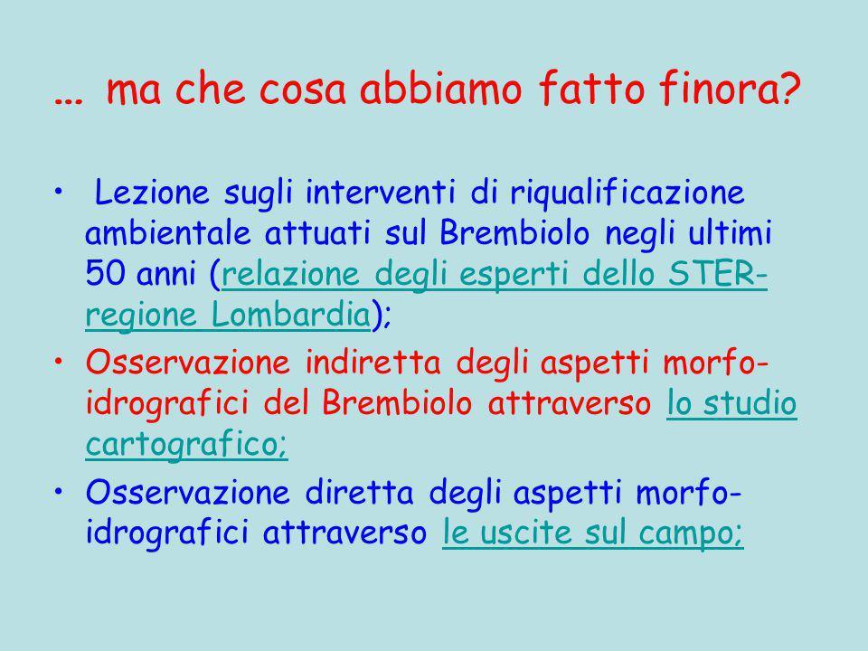 Scuola Media Griffini A.S. 2008-2009 Classi 1^C & 2^C