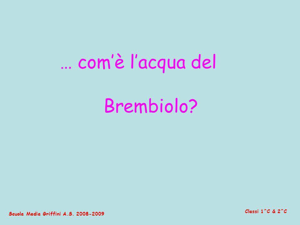 Scuola Media Griffini A.S. 2008-2009 Classi 1^C & 2^C … comè lacqua del Brembiolo?