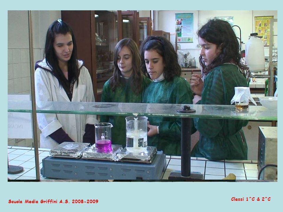 Scuola Media Griffini A.S. 2008-2009 Classi 1^C & 2^C … li hanno analizzati sotto lesperta guida degli studenti e dei professori dell I.I.S. Cesaris