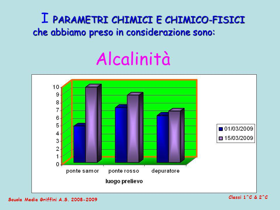 Scuola Media Griffini A.S. 2008-2009 Classi 1^C & 2^C I P PP PARAMETRI CHIMICI E CHIMICO-FISICI che abbiamo preso in considerazione sono: Alcalinità
