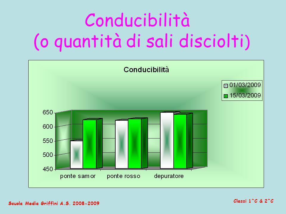 Scuola Media Griffini A.S. 2008-2009 Classi 1^C & 2^C Conducibilità (o quantità di sali disciolti )