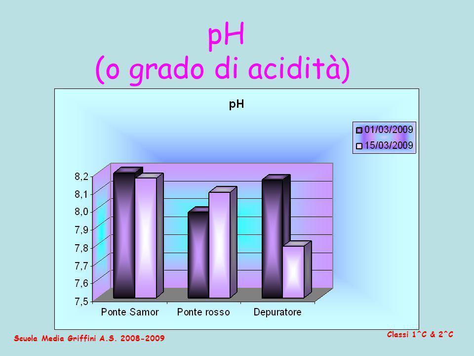 Scuola Media Griffini A.S. 2008-2009 Classi 1^C & 2^C pH (o grado di acidità )