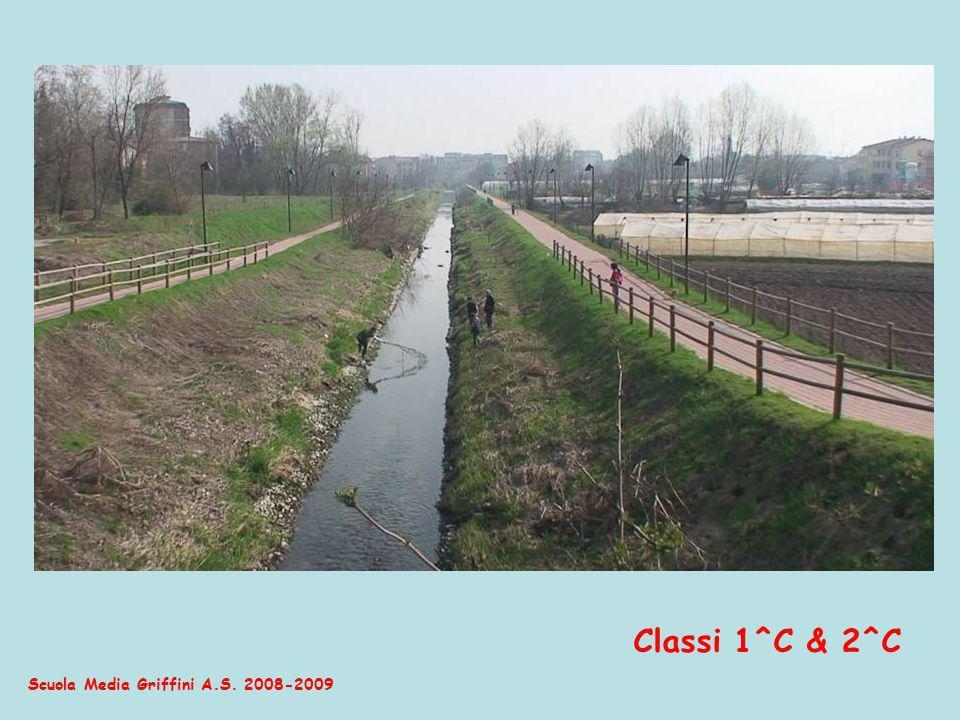 Scuola Media Griffini A.S. 2008-2009 chiare, fresche, dolci acque del nost Brembiöl Classi 1^C & 2^C
