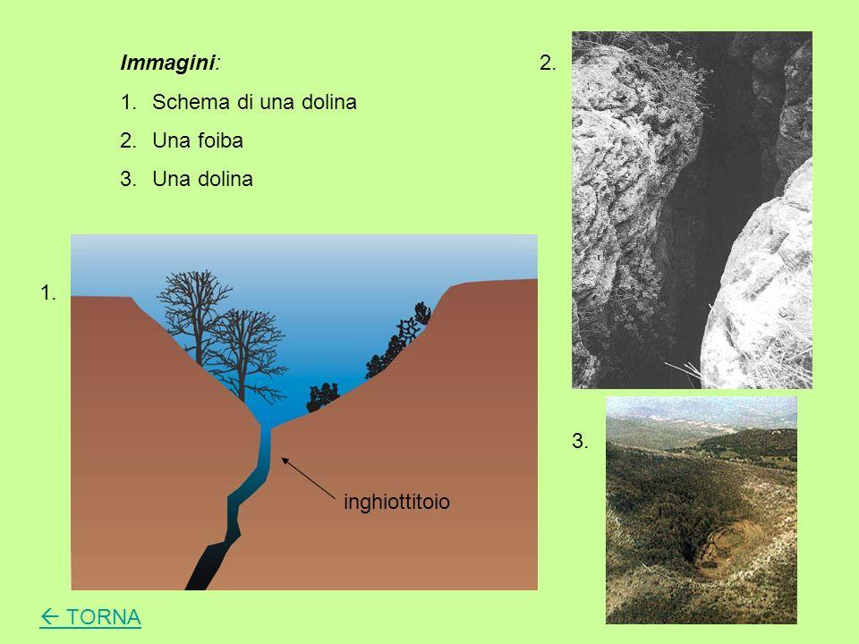 Il carsismo è un complesso di fenomeni naturali di alterazione chimica dei territori calcarei che si svolge secondo la reazione: CO 2 + H 2 O+ CaCO 3 Ca(HCO 3 ) 2 (Carbonato di calcio) (Bicarbonato di calcio)