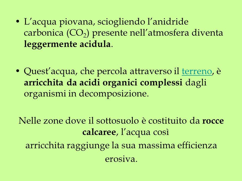 Lacqua piovana, sciogliendo lanidride carbonica (CO 2 ) presente nellatmosfera diventa leggermente acidula. Questacqua, che percola attraverso il terr