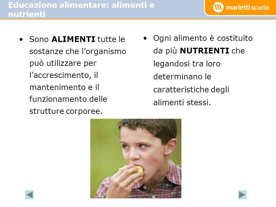 MACRONUTRIENTI: carboidrati proteine grassi acqua MICRONUTRIMENTI: sali minerali vitamine Nutrienti