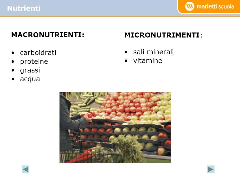 Deve comprendere tutti i nutrienti Assicurare lequilibrio tra energia spesa ed energia assunta Soddisfare tutti i fabbisogni dellorganismo La dieta equilibrata