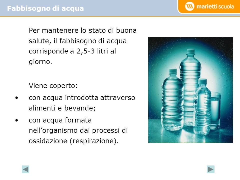 Per mantenere lo stato di buona salute, il fabbisogno di acqua corrisponde a 2,5-3 litri al giorno.