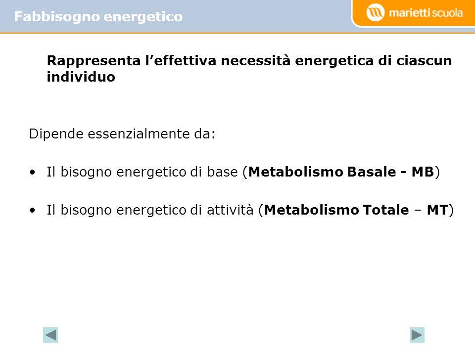 Rappresenta leffettiva necessità energetica di ciascun individuo Dipende essenzialmente da: Il bisogno energetico di base (Metabolismo Basale - MB) Il bisogno energetico di attività (Metabolismo Totale – MT) Fabbisogno energetico